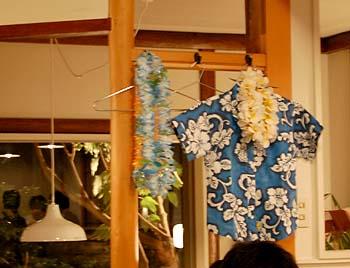 hawai8.jpg